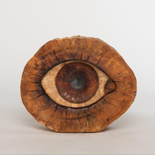 Auge IV